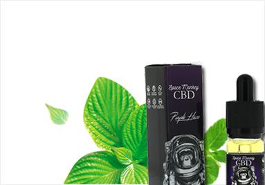 CBD Purple Haze